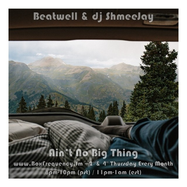 beatwell_aint-no-big-thing-freq2