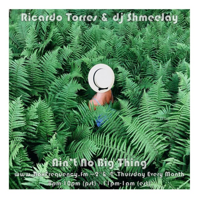 Richardo Torres_Ain't No Big Thing-Freq2