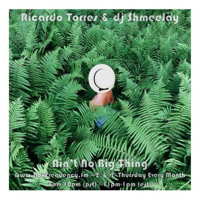 Richardo Torres_Ain't No Big Thing-Freq2