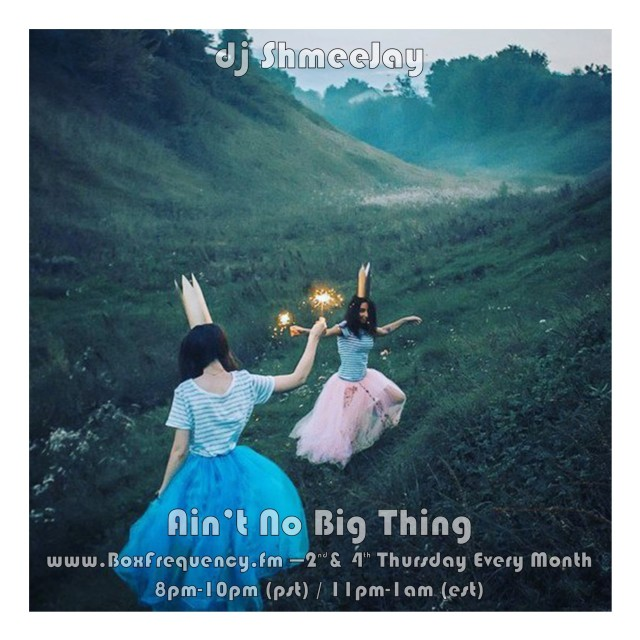 shmeejay-solo_aint-no-big-thing-freq2