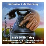 Soultronic_Ain't No Big Thing-Freq2