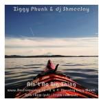 ziggy-phunk_aint-no-big-thing-freq2