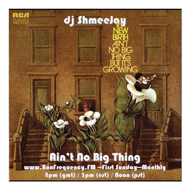 djShmeeJay_Ain't No Big Thing-Freq