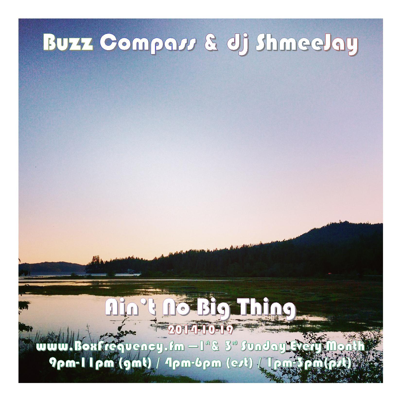 Buzz Compass_Ain't No Big Thing-Freq2