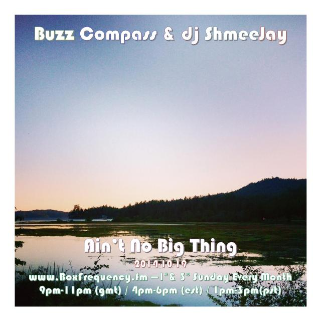 Buzz Compass_Ain't No Big Thing-Freq2