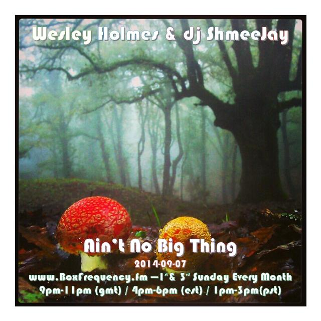 Wesley Holmes_Ain't No Big Thing-Freq2