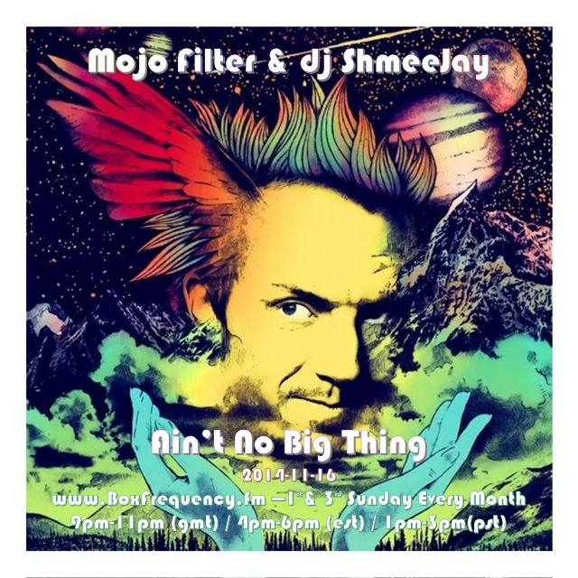 Mojo Filter_Ain't No Big Thing-Freq2