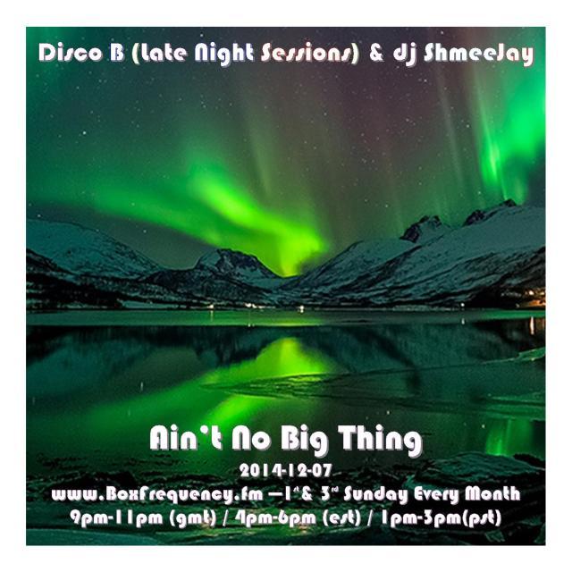 DiscoB_Ain't No Big Thing-Freq