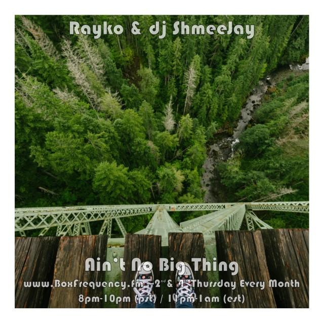 Rayko_Ain't No Big Thing-Freq2